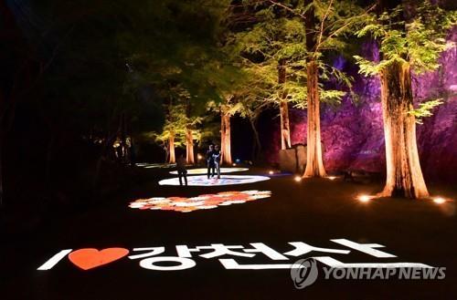 순창 강천산 밤풍경 화려해졌다…야간 명소화사업 완료