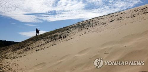 [#꿀잼여행] 충청권: 한국의 사막 거닐며 이국적 정취에 풍덩
