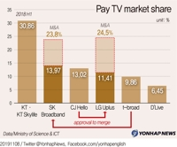 Telco-cable TV mergers to reshape S. Korean media market