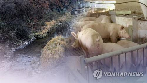 S. Korea confirms 56th case of African swine fever - 1