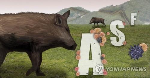 S. Korea reports 5 more African swine fever cases in wild boars