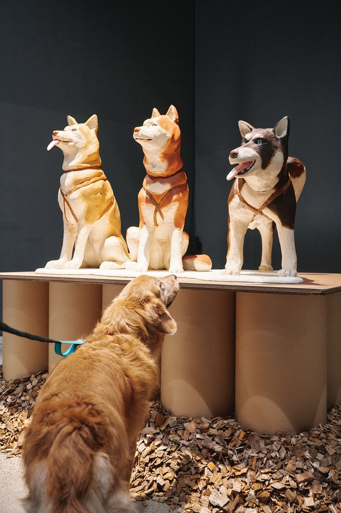 "This photo provided by MMCA on Sept 21, 2020, shows ""Togo and Balto,"" a sculpture piece by Chung Yeon-doo, featured at a special canine-themed exhibition titled ""A Museum For All, A Museum For Dogs"" at the museum's gallery in Seoul. (PHOTO NOT FOR SALE) (Yonhap)"