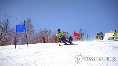 공동훈련하는 남북 스키 선수들