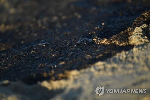 3일(현지시간) 미국 캘리포니아 헌팅턴비치의 바다 위에 떠 있는 기름. 이 지역에서는 파이프라인에 구멍이 뚫리면서 대규모 기름 유출 사고가 발생했다. [AFP=연합뉴스]