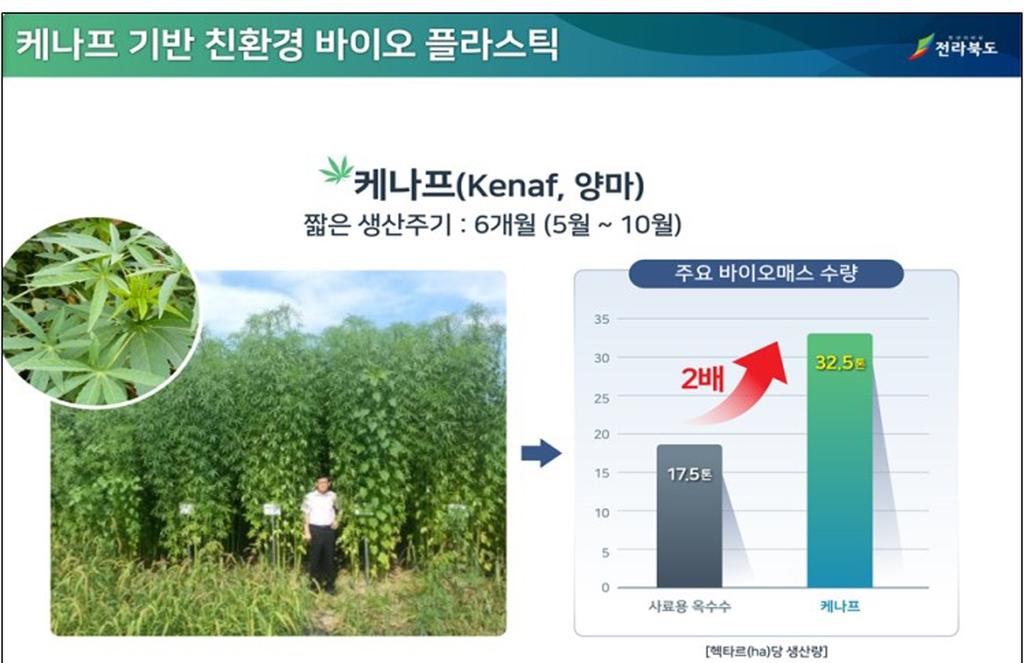 케나프 기반 친환경 바이오 플라스틱
