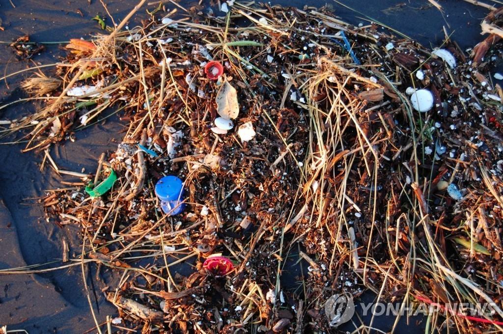 플라스틱 쓰레기로 오염된 바다