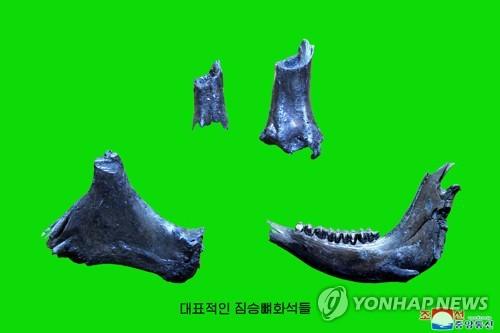 북한서 구석기시대 후기 유적 발굴