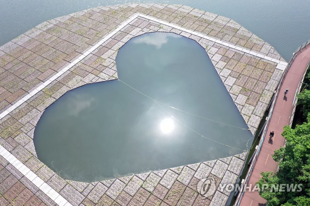 衣岩湖に入った「ハート人工水草」