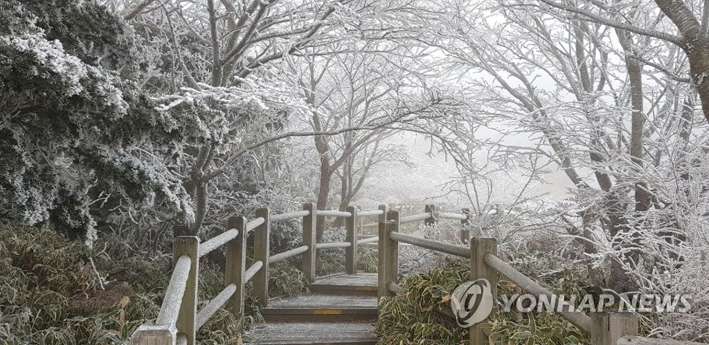First snow at Hallasan National Park on Jeju