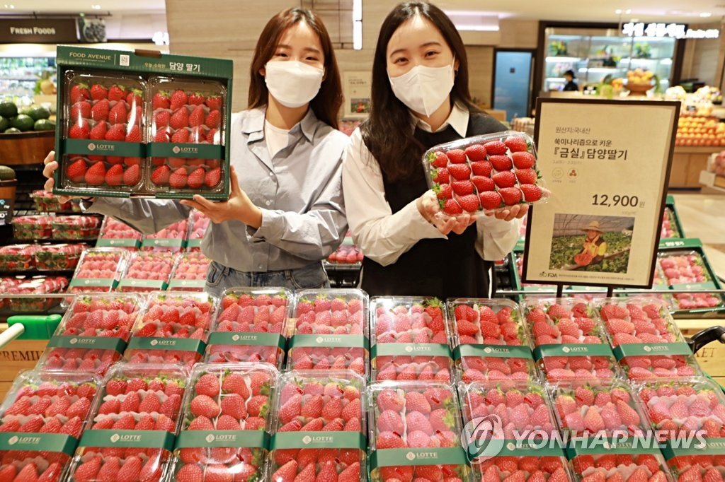 Models pose with strawberries at a supermarket in Seoul, in this file photo provided by Lotte Shopping Co. (PHOTO NOT FOR SALE) (Yonhap)