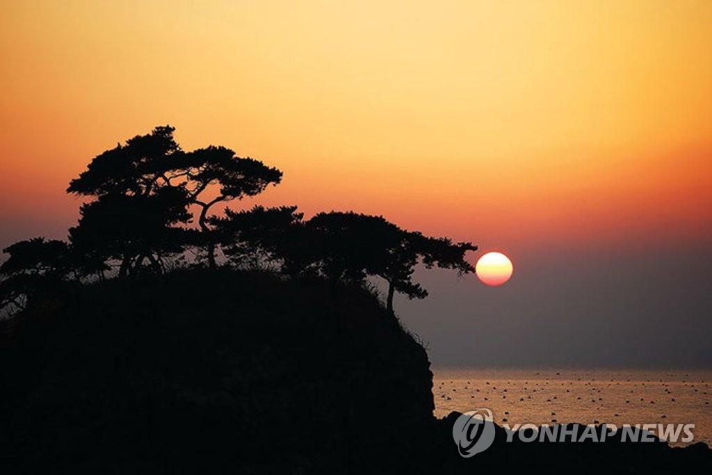 부안 '솔섬' 전북도 기념물 지정